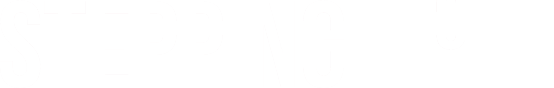 SS Logo (white background) kopi-2